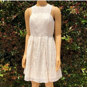 The Limited Lace Dress